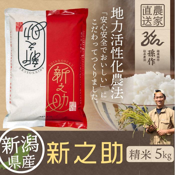 新之助 精米 5kg しんのすけ 新潟県産 お米 magosaku-food