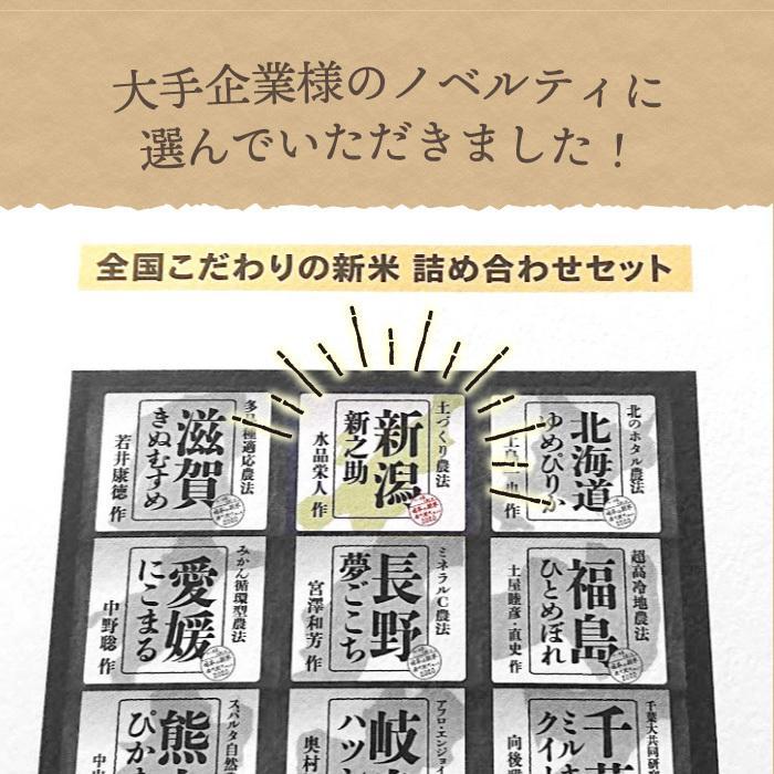 新之助 玄米 5kg  しんのすけ 新潟県産 お米 げんまい|magosaku-food|05
