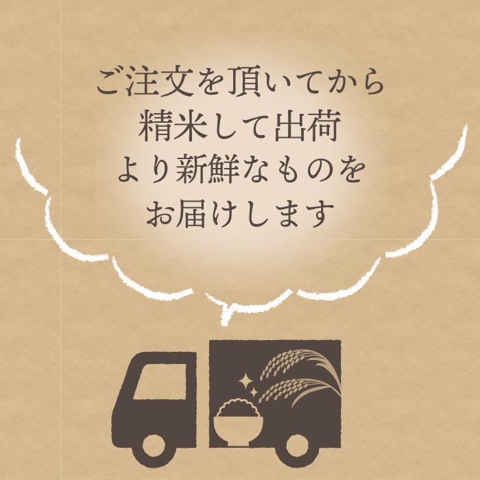 新之助 精米 5kg しんのすけ 新潟県産 お米 magosaku-food 12