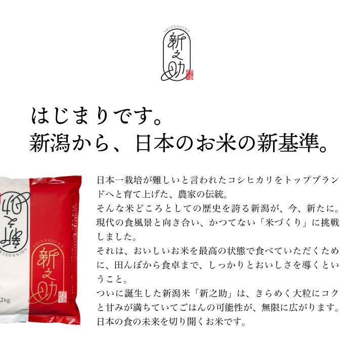 新之助 精米 5kg しんのすけ 新潟県産 お米 magosaku-food 03