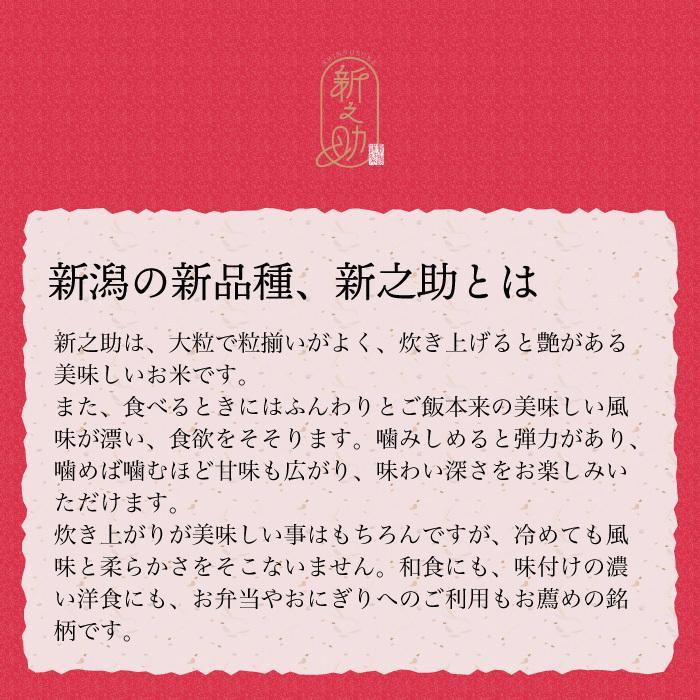 新之助 精米 5kg しんのすけ 新潟県産 お米 magosaku-food 04