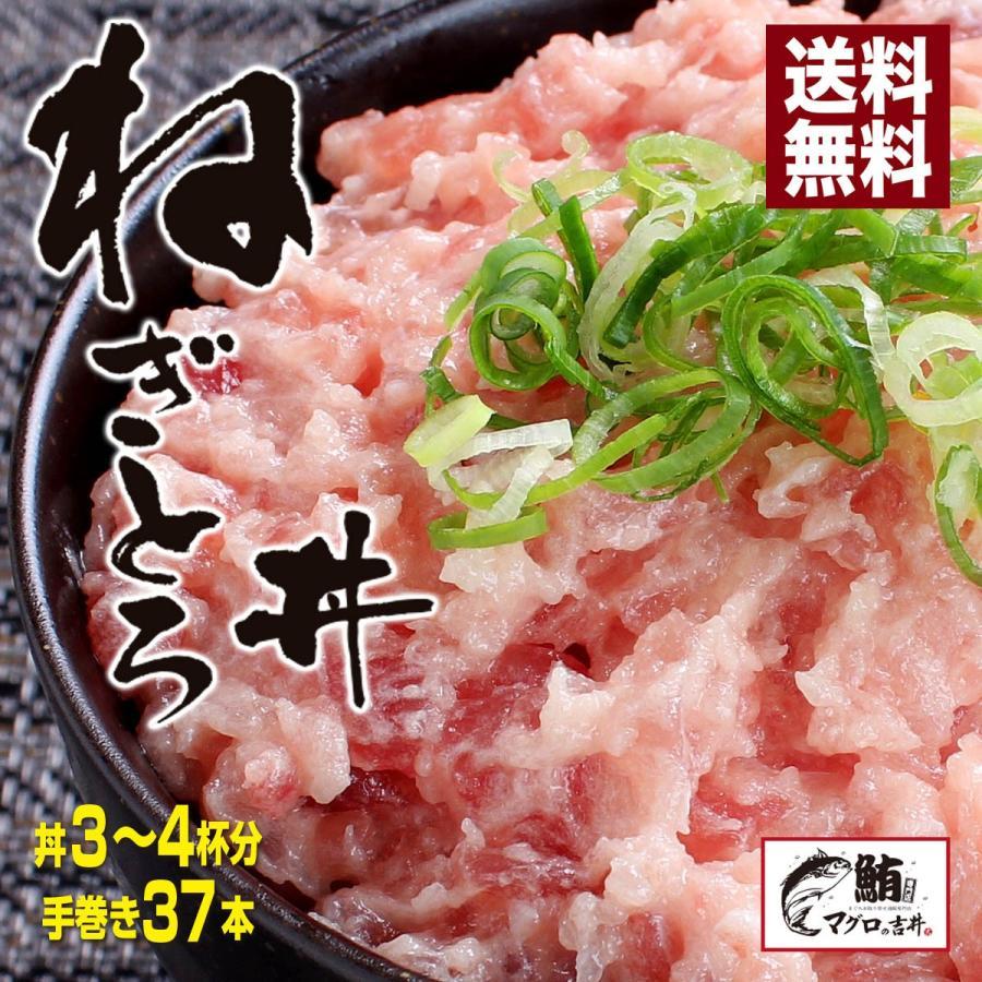お中元 海鮮 ギフト プレゼント ネギトロ丼 ネギトロ 500g 約5人前 マグロ お取り寄せ まぐろ 鮪 送料無料|maguro441