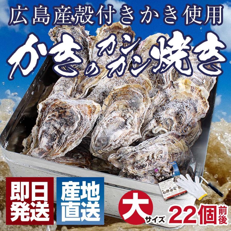 殻付き 牡蠣 カキ カンカン焼きセット 大粒 3kg 海鮮 バーベキュー かんかん焼き LLサイズ 20個〜23個入 3〜4人前  ガンガン焼き BBQ アウトドア|maguro441