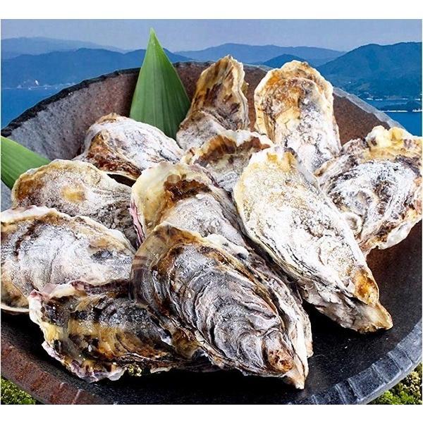 殻付き 牡蠣 カキ カンカン焼きセット 大粒 3kg 海鮮 バーベキュー かんかん焼き LLサイズ 20個〜23個入 3〜4人前  ガンガン焼き BBQ アウトドア|maguro441|06