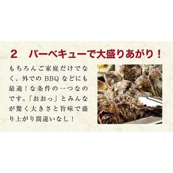 殻付き 牡蠣 カキ カンカン焼きセット 大粒 3kg 海鮮 バーベキュー かんかん焼き LLサイズ 20個〜23個入 3〜4人前  ガンガン焼き BBQ アウトドア|maguro441|08