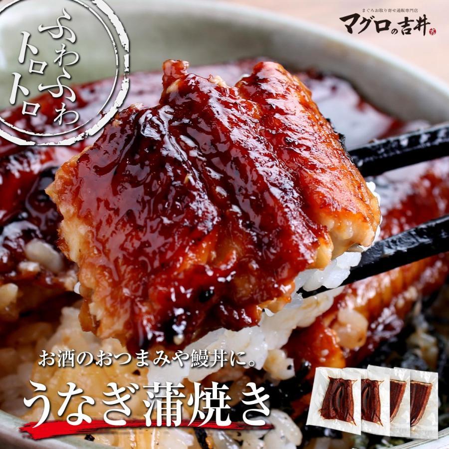 ウナギ蒲焼き 海鮮 セット ギフト 2〜3人前 商舗 海鮮福袋 ディスカウント お取り寄せ 送料無料