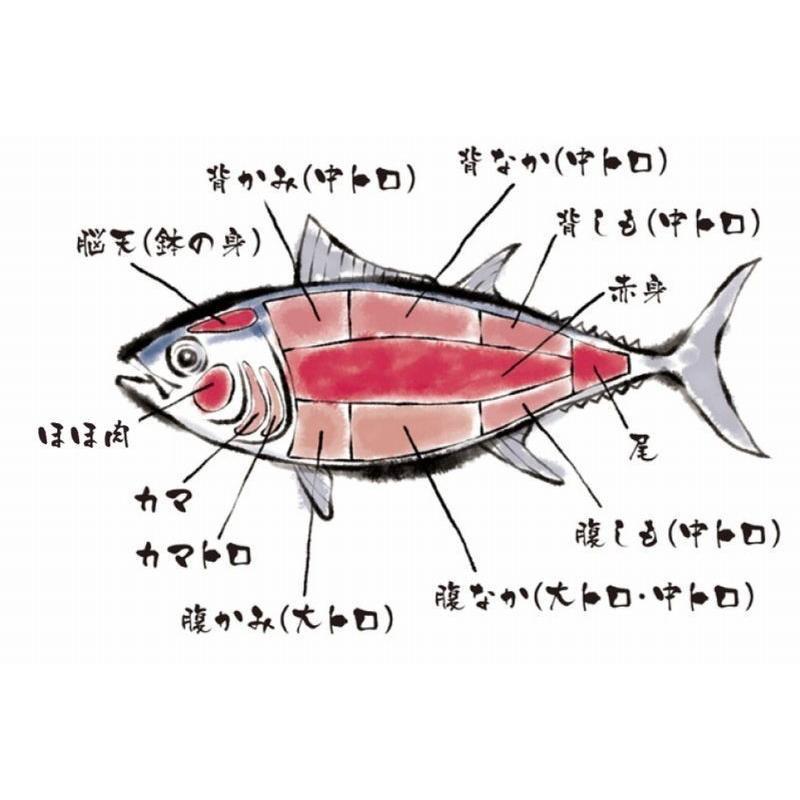 まぐろ マグロ 鮪 本マグロ 中トロ スライス 100g 1〜2人前 寿司 刺身 簡単 カット済 解凍するだけ|maguro441|09