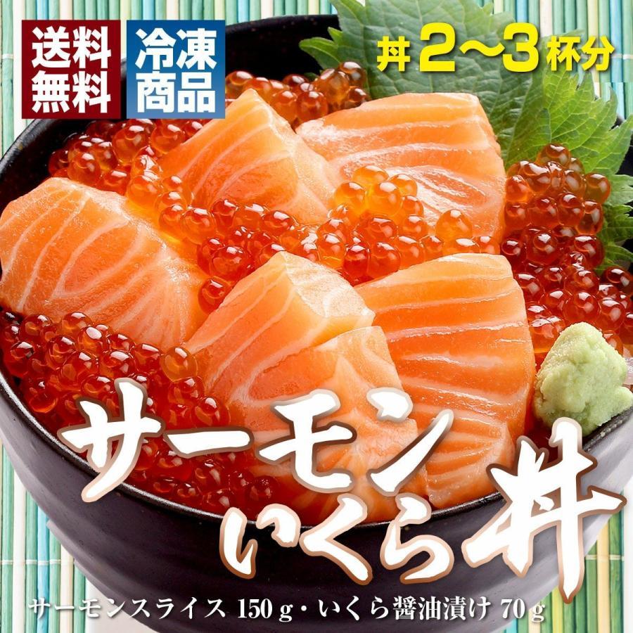 お中元 海鮮 ギフト 送料無料 サーモン イクラ 丼 高級 海鮮セット 海鮮丼 刺身 2〜3杯分 お父さん お母さん 贈り物 プレゼント 食べ物|maguro441