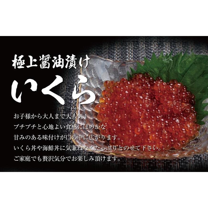 お中元 海鮮 ギフト 送料無料 サーモン イクラ 丼 高級 海鮮セット 海鮮丼 刺身 2〜3杯分 お父さん お母さん 贈り物 プレゼント 食べ物|maguro441|02