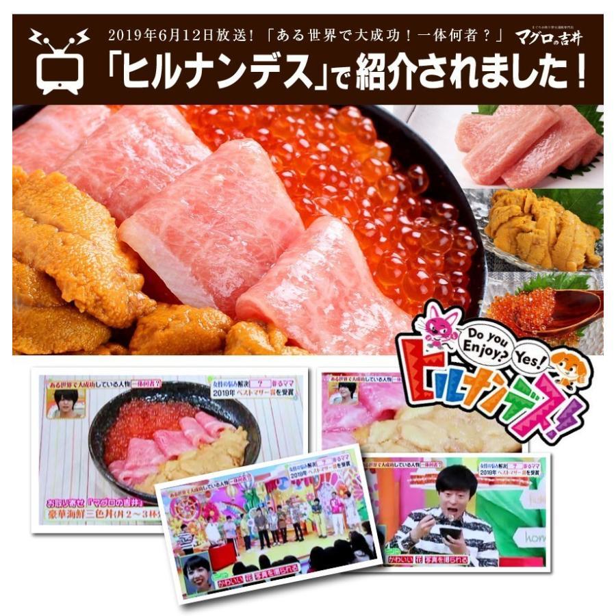 お中元 海鮮 ギフト 送料無料 サーモン イクラ 丼 高級 海鮮セット 海鮮丼 刺身 2〜3杯分 お父さん お母さん 贈り物 プレゼント 食べ物|maguro441|15