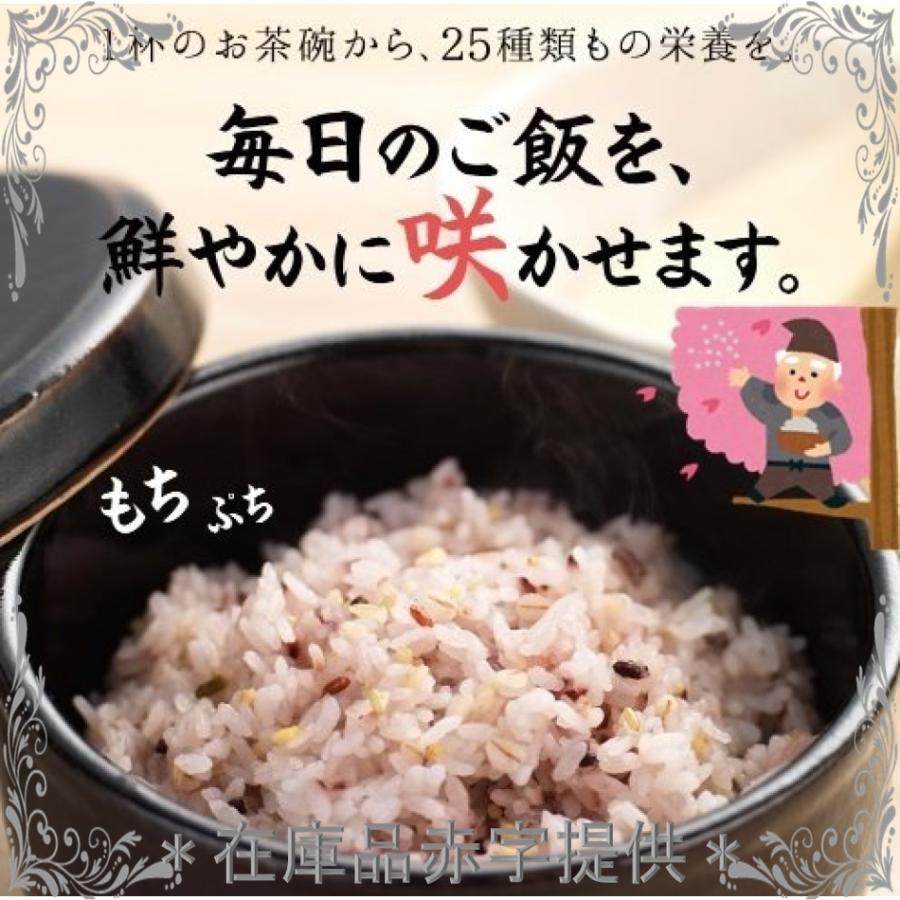 シードコムス 25穀 国産 雑穀米 完全無添加 国産品使用 500g mahalocastle 02