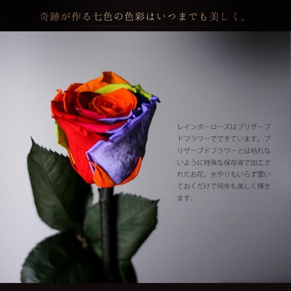 プリザーブドフラワー レインボーローズ 花 プレゼント薔薇 一輪 花言葉は奇跡 Rainbow Rose|makefuture|03