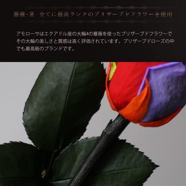 プリザーブドフラワー レインボーローズ 花 プレゼント薔薇 一輪 花言葉は奇跡 Rainbow Rose|makefuture|04