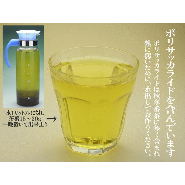 お茶 番茶 秋冬番茶 牧之原産 500g くせのないスッキリとした味わい 水出しでポリサッカライド 血糖値が気になる方に 静岡茶 makinoharacha 04