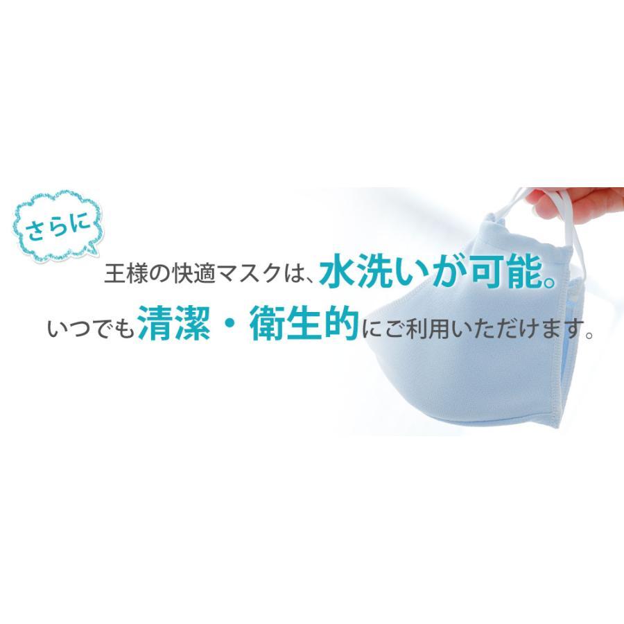 マスク 日本製 夏用 1枚 洗える 東洋紡ドライアイス素材 王様の快適マスク フィルターポケット付|makura|10