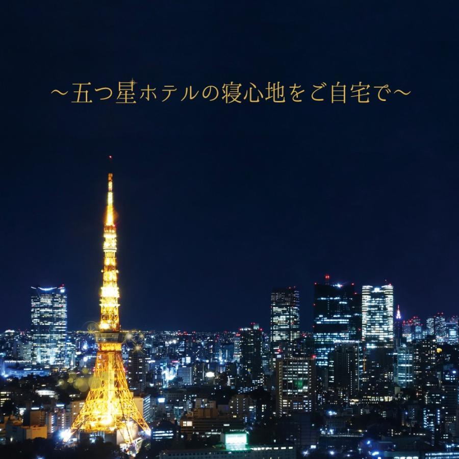 東京ラグジュアリーホテルピロー 五つ星ホテルの寝心地をご自宅で ホテル仕様の枕&枕カバー10点セット|makura|02