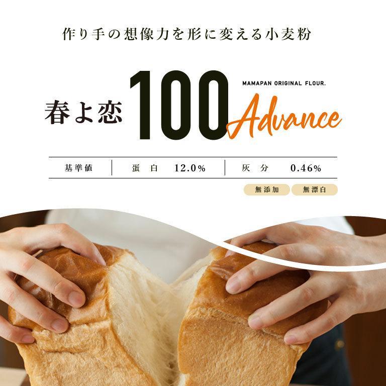 強力粉 春よ恋100 北海道産パン用小麦粉 2.5kg 国産小麦粉|mamapan|03