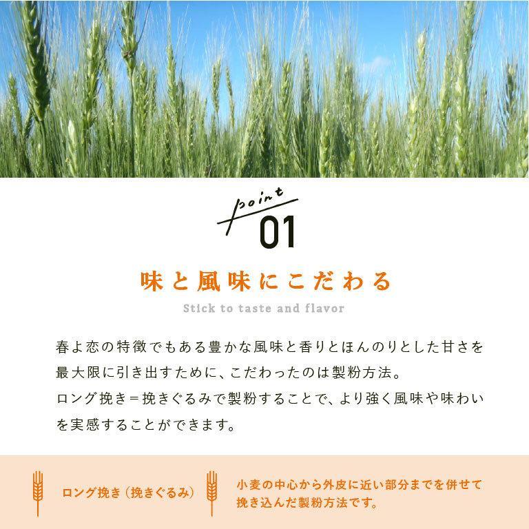 強力粉 春よ恋100 北海道産パン用小麦粉 2.5kg 国産小麦粉|mamapan|05