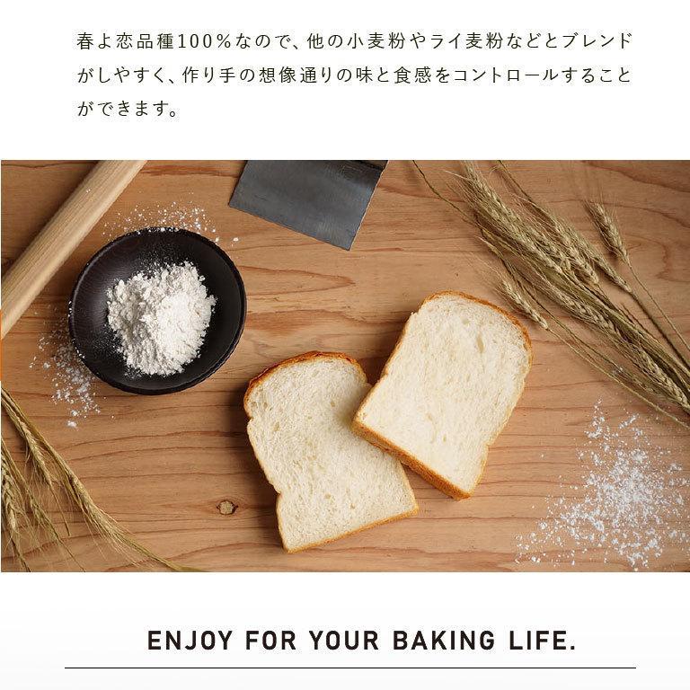 強力粉 春よ恋100 北海道産パン用小麦粉 2.5kg 国産小麦粉|mamapan|07
