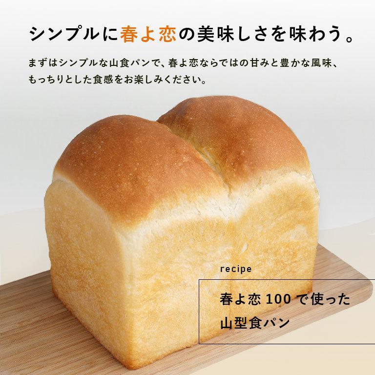 強力粉 春よ恋100 北海道産パン用小麦粉 2.5kg 国産小麦粉|mamapan|08