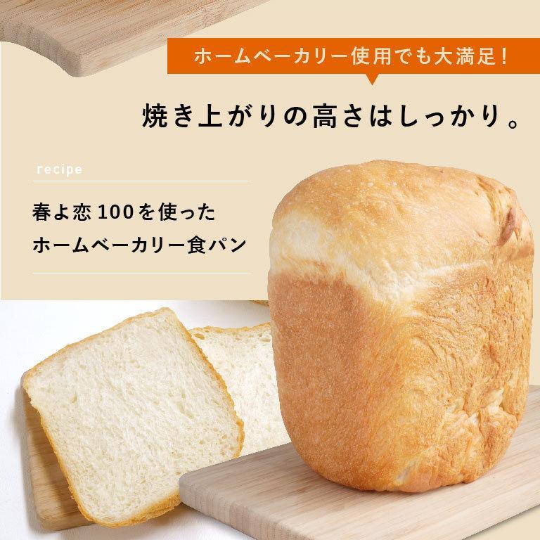 強力粉 春よ恋100 北海道産パン用小麦粉 2.5kg 国産小麦粉|mamapan|09