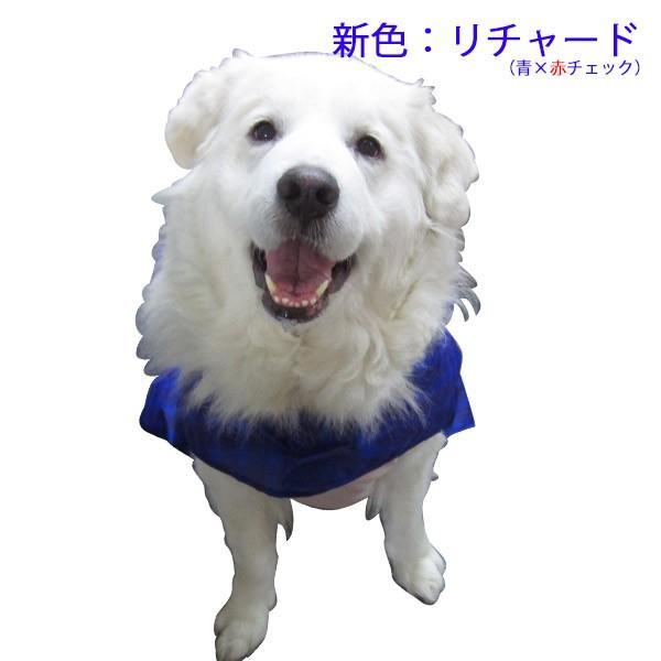 犬のレインコート 日本製! 超大型犬用レインコート(3Lサイズ) バーニーズサイズ  レターパック送料無料(代引き不可)|mamav|19