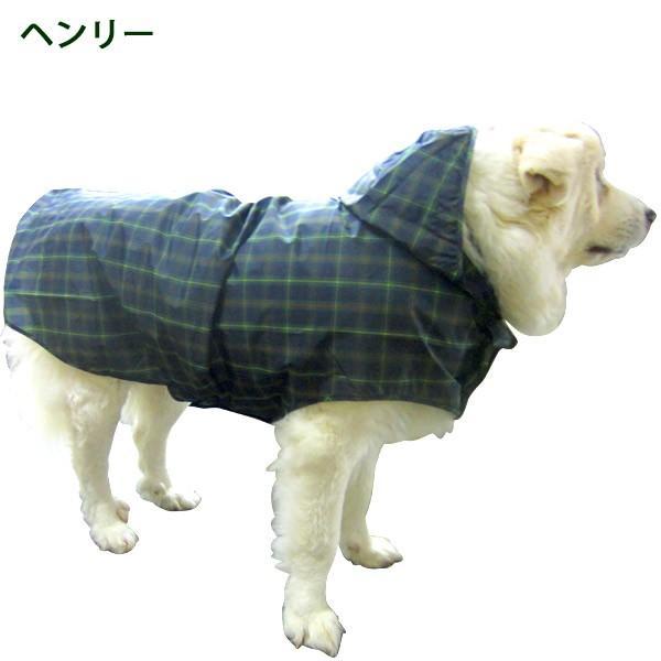 犬のレインコート 日本製! 超大型犬用レインコート(3Lサイズ) バーニーズサイズ  レターパック送料無料(代引き不可)|mamav|03