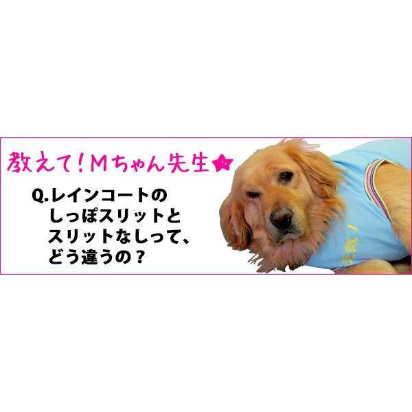 犬のレインコート 日本製! 超大型犬用レインコート(3Lサイズ) バーニーズサイズ  レターパック送料無料(代引き不可)|mamav|08