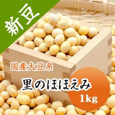 大豆 里のほほえみ 岩手県産 大粒大豆 令和1年産 1kg