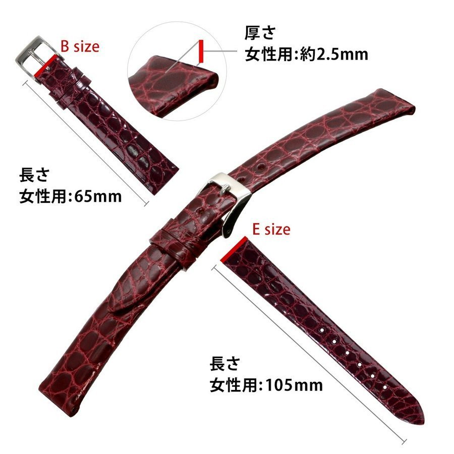 腕時計ベルト バンド レディース 交換 ワニ革 16mm 15mm 14mm 13mm CASSIS RIOM shiny D0000B68|mano-a-mano|03