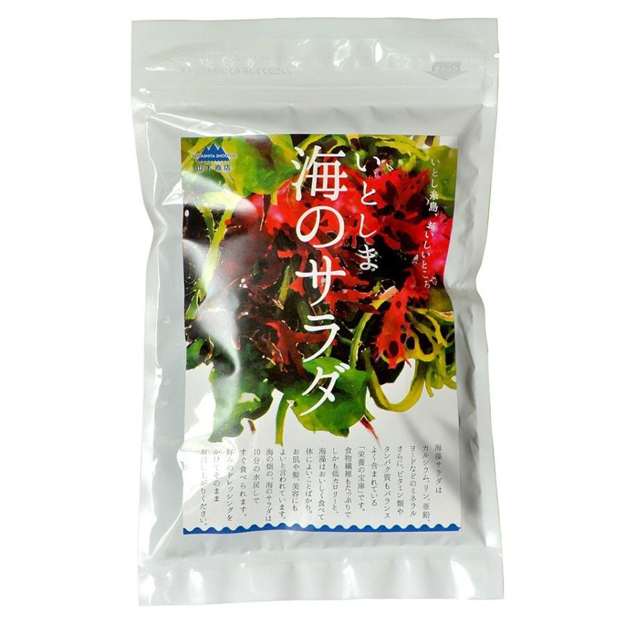 糸島の乾物 海藻 いとしま 海のサラダ【山下商店】|manpuku-kyusyu