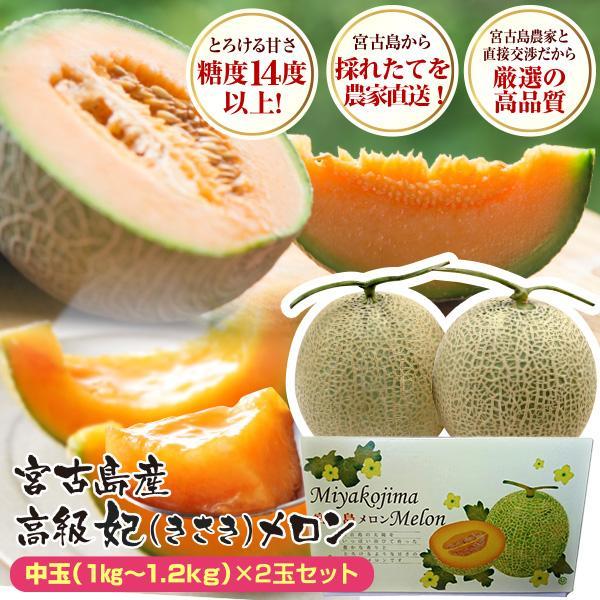 宮古島産 春 メロン 赤肉クインシーメロン2玉  3L 超大玉(1.7kg〜2.0kg)|mantenmiyakojima