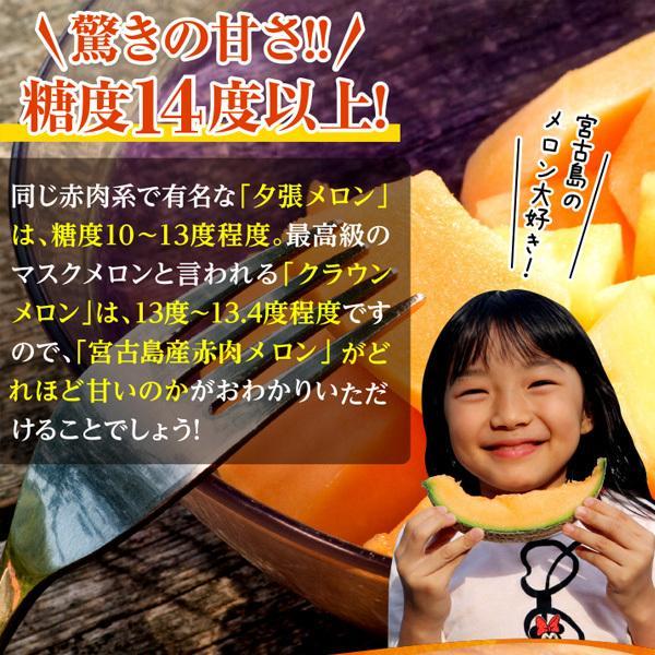 宮古島産 春 メロン 赤肉クインシーメロン2玉  3L 超大玉(1.7kg〜2.0kg)|mantenmiyakojima|03