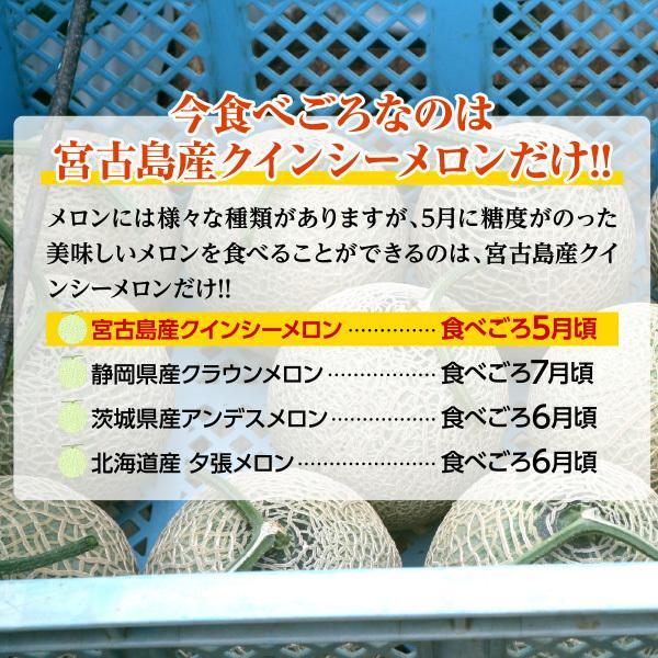宮古島産 春 メロン 赤肉クインシーメロン2玉  3L 超大玉(1.7kg〜2.0kg)|mantenmiyakojima|05