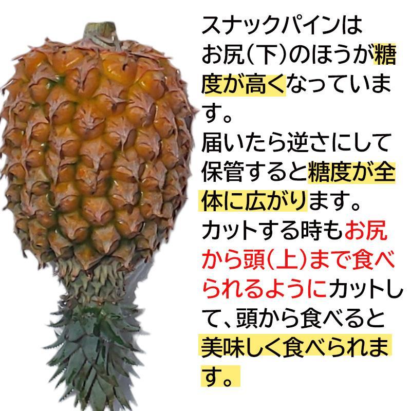 沖縄産 完熟 スナックパイン ボゴールパイン 約500g前後 ×6玉入り 小玉サイズ (約2.5kg〜3kg)糖度15度以上 パイナップル パイン|mantenmiyakojima|04
