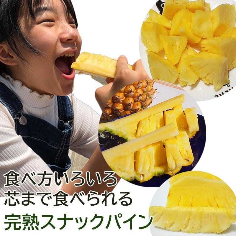 沖縄産 完熟 スナックパイン ボゴールパイン 約500g前後 ×6玉入り 小玉サイズ (約2.5kg〜3kg)糖度15度以上 パイナップル パイン|mantenmiyakojima|06