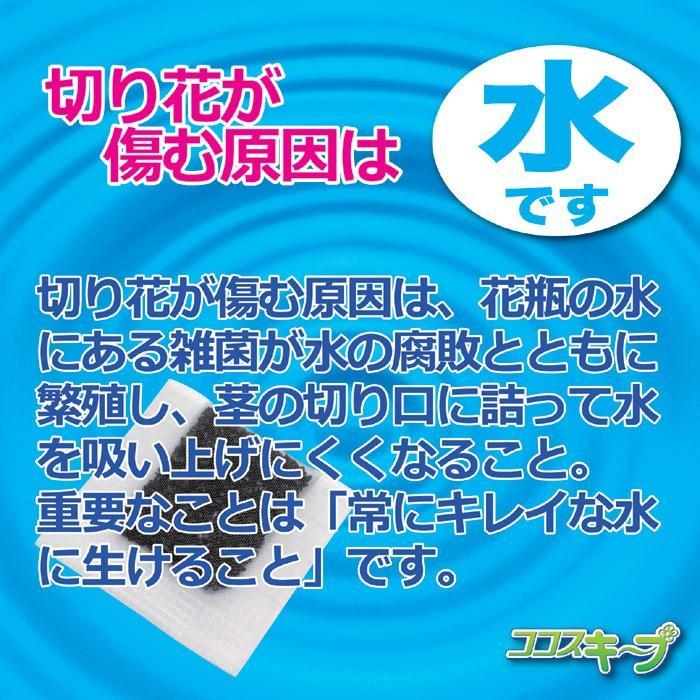 花瓶 雑貨 便利 生け花イキイキ ココスキープ 12個入 ネコポス発送 送料180円|maone|02