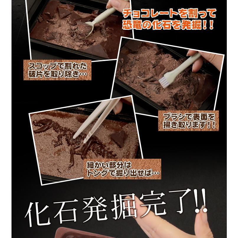ジュラシックショコラ【ディグアップ】発掘 高級 キッズ 面白チョコ おもしろ 人気【お子様に人気♪】 maquis 05