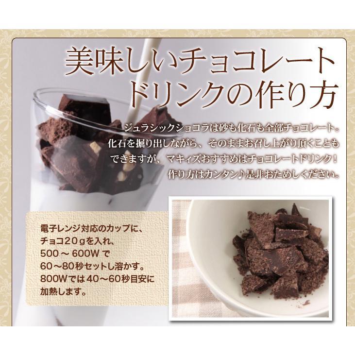 ジュラシックショコラ【ディグアップ】発掘 高級 キッズ 面白チョコ おもしろ 人気【お子様に人気♪】 maquis 06