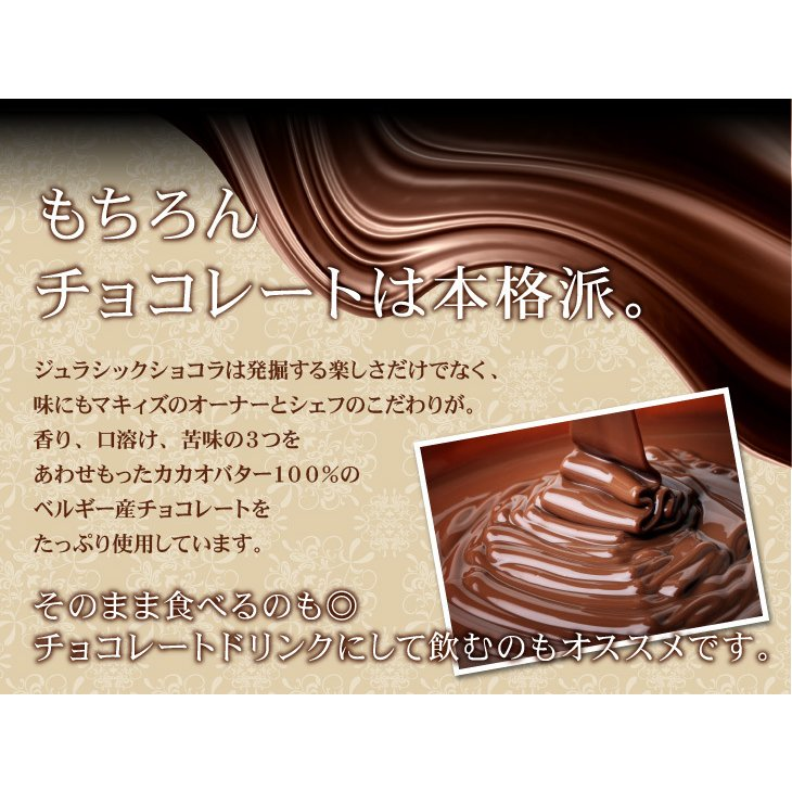 マキィズ チョコレート  ジュラシックショコラ パズル|maquis|09