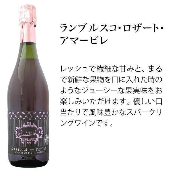 ワインセット バラエティ5本セット 一度に赤ワイン ロゼワイン 白ワイン 泡ワイン が楽しめるお得なワインセット mariage 02