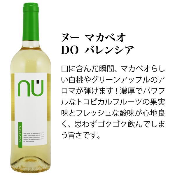 ワインセット バラエティ5本セット 一度に赤ワイン ロゼワイン 白ワイン 泡ワイン が楽しめるお得なワインセット mariage 04