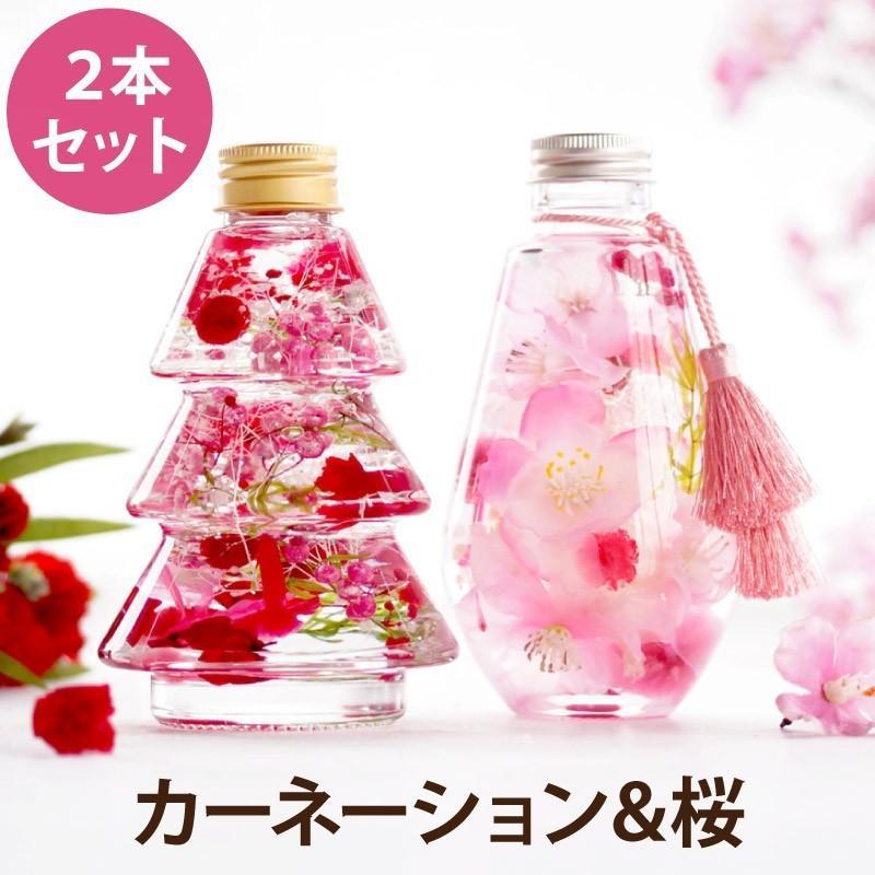 ミニカーネーション&桜