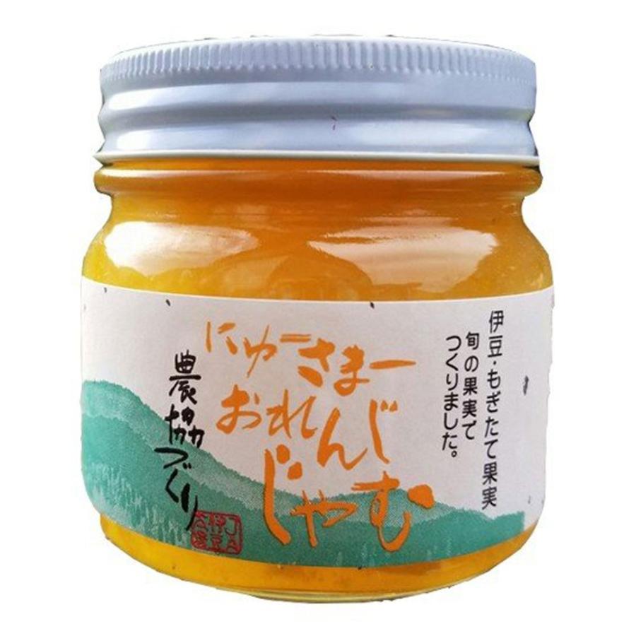 にゅーさまーおれんじじゃむ 260g 伊豆 特産 日向夏 ニューサマーオレンジ 農協 ランキングTOP10 初回限定 JA