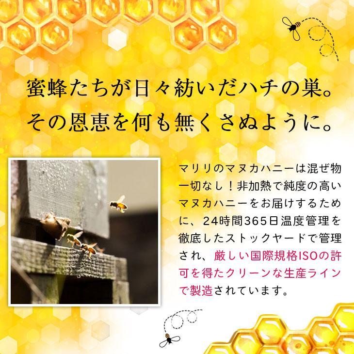 マヌカハニー はちみつ MGS 16+ MG 600+ 250g 送料無料 無添加 非加熱 Manuka Honeyとは|maririnz-manukahoney|12