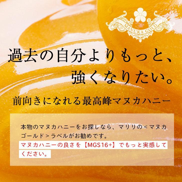 マヌカハニー はちみつ MGS 16+ MG 600+ 250g 送料無料 無添加 非加熱 Manuka Honeyとは|maririnz-manukahoney|03