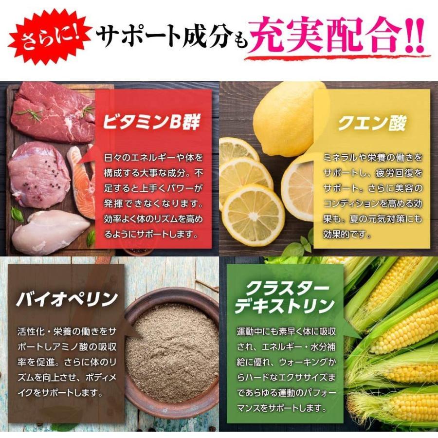 EAAサプリ EAAX 500g パイン味 アミノ酸 HMB プロテイン BCAA ダイエット 筋トレ 減量|marucomarket|06
