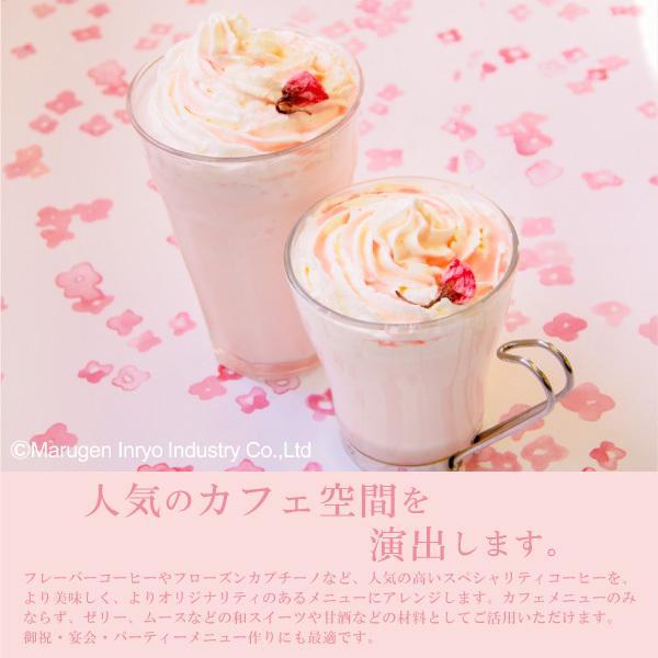 ハーダース カフェ用フレーバーソース さくら 300ml ドリンク コーヒー アイス パンケーキ シロップ ラテ ミルク トッピング マキアート 桜 桜餅 デザート|marugeninryo|06