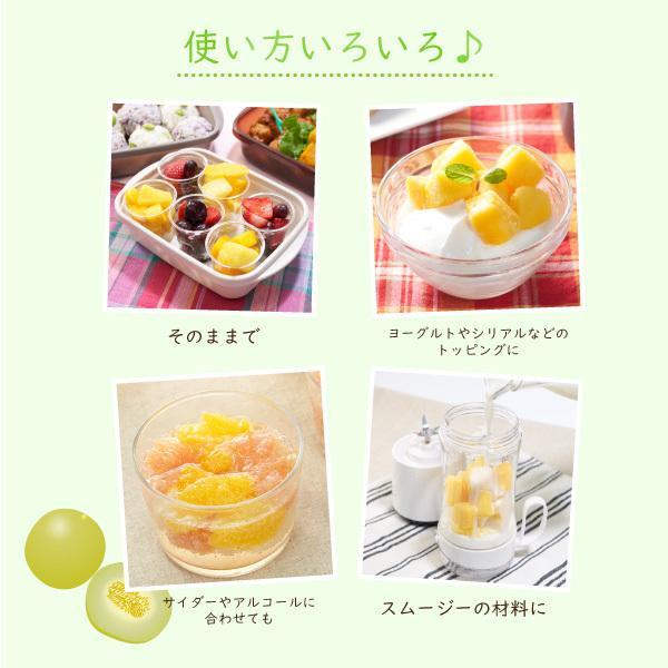 <冷凍フルーツ>ハーダース IQFカットフルーツ ハネジューメロンチャンク500g 冷凍食品 カット スムージー 業務用 アイス デザート 果物 メロンソーダ|marugeninryocool|05