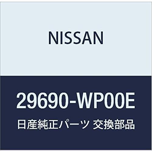 NISSAN(ニッサン)日産純正部品 ケーブルアッセンブリー 29690-WP00E
